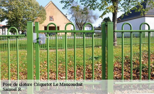 Pose de cloture  criquetot-le-mauconduit-76540 Renold Elagage
